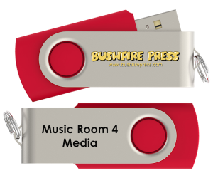 Music Room 4 AV USB